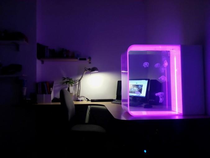 alles rund um die quallenhaltung. Black Bedroom Furniture Sets. Home Design Ideas